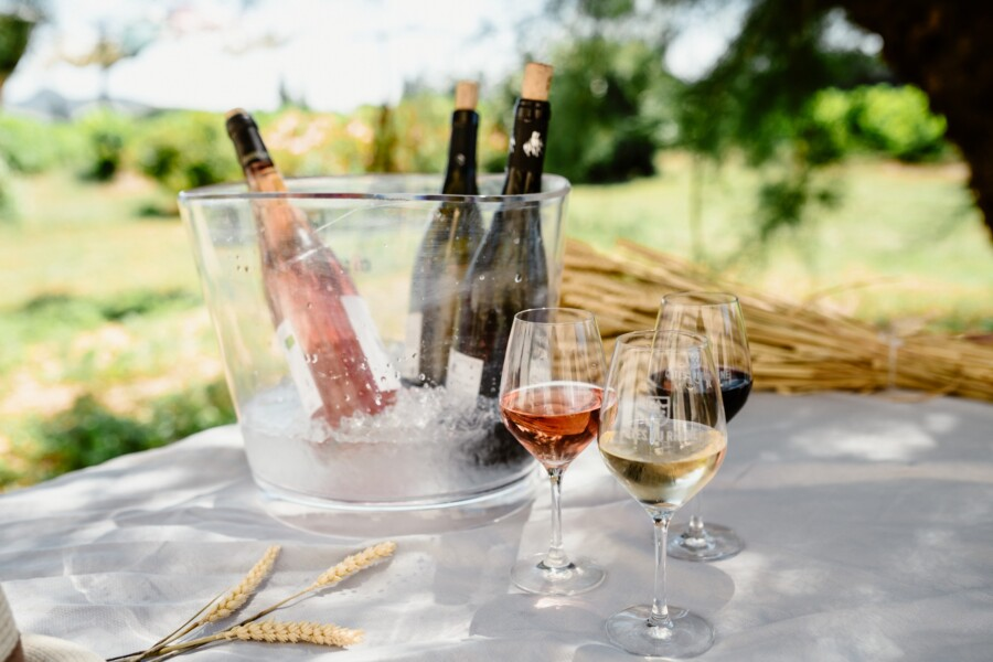 Sustainability in the Côtes du Rhône: Less is More